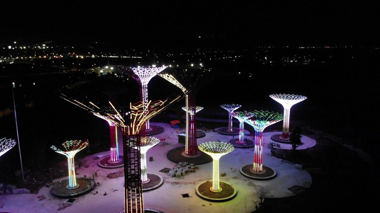 Công viên ánh sáng quận 9 sẽ khai trương trong tháng này 1